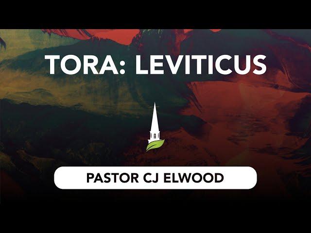 Torah - Leviticus