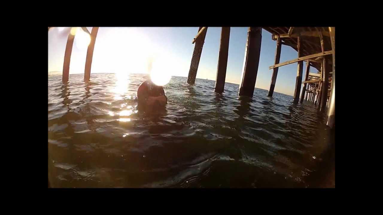 Newport Pier Ca Scuba Dive