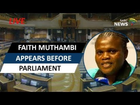 Muthambi appears before Parly's Joint Committee on Ethics