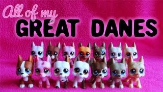 All of My LPS Great Danes! + Extra Features