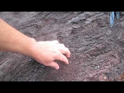 Geology in the Marin Headlands - Hydrothermal Vent Deposits