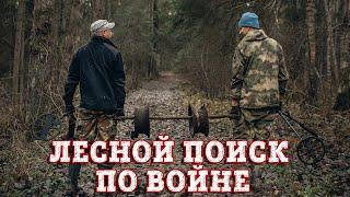 Поиск по войне в лесу. Нашли разбитые немецкие позиции