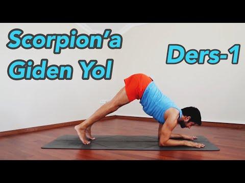 Scorpion'a Giden Yol Ders-1 (Orta Seviye)