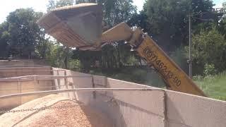 Загрузка зерновоза отходами кукурузы. Украина(Транспортная компания ООО