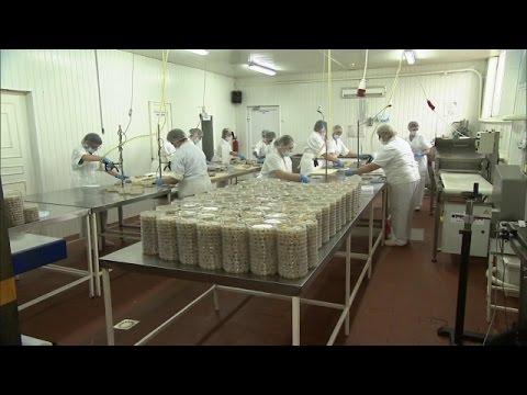 Российская сельдь: секреты производства. Сделано в России. 23.12.2015
