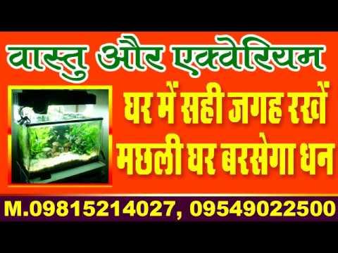 vastu tips for aquarium | fish tank | fish aquarium | vastu tips in hindi