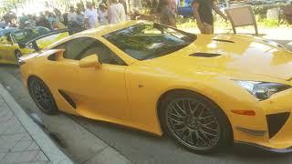 Exotics on Las Olas Car Show!