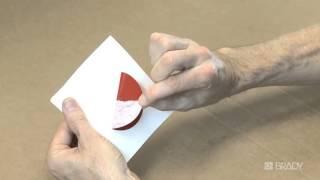 Печать и вырубка этикеток на принтере  Brady BBP®37