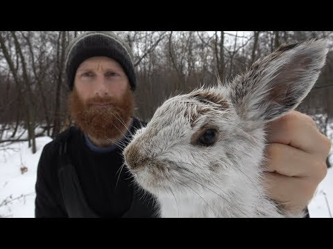 PRIMITIVE SKILLS and TRAPS in the WILD   Animal Traps and Snaring   ASMR (Silent)