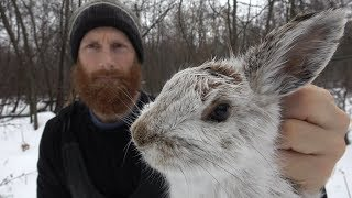 PRIMITIVE SKILLS and TRAPS in the WILD | Animal Traps and Snaring | ASMR (Silent)