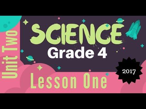 Grade 4 | Unit 2 - Lesson 1 - Stars and Planets
