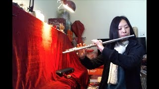 Adult Flute Beginner - Flute Progress in First Year