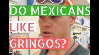 gringos travel mexico