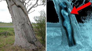 15 चौंका देने वाली खोजे जो अजीब जगह मिली 15 discovery found unexpected places