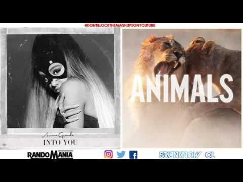 Ariana Grande vs. Maroon 5 -