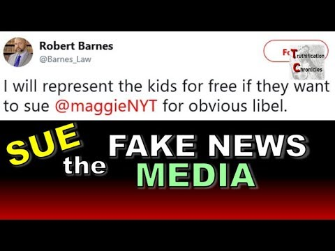SUE the FAKE NEWS MEDIA!!!