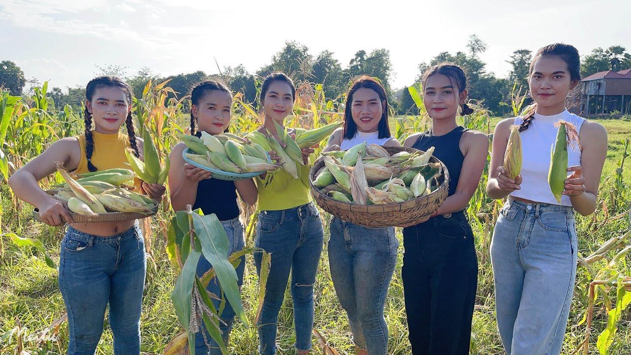 Wow amazing cooking fresh corn roasted  my homeland - Amazing video