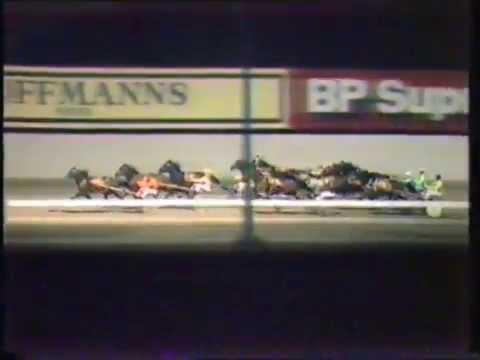1984 Interdominions - Pacers' 2nd Heat, Globe Derby Park, Adelaide: Bundanoon