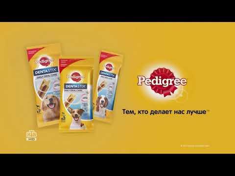 Pedigree Denta Stix - рекламный ролик