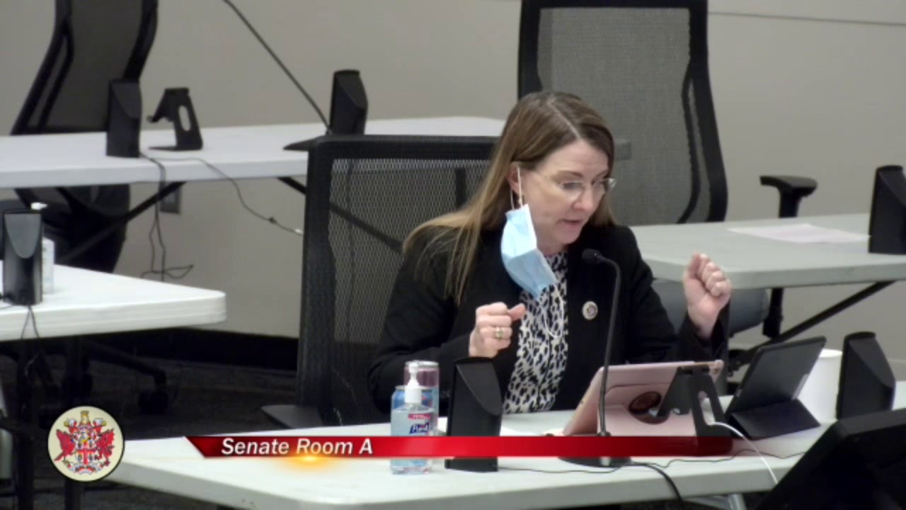 Senator Siobhan Dunnavant Speaking to SB1357 in Public Education Subcommittee