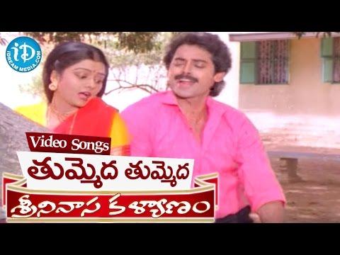 Srinivasa Kalyanam Songs - Tummeda Tummeda Video Song || Venkatesh, Bhanupriya || K V Mahadevan