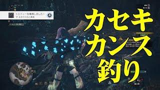 【MHW】レア環境生物「カセキカンス」を釣ろう! thumbnail