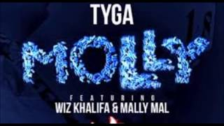 Molly (Clean) BASS BOOSTED   Tyga Ft  Wiz Khalifa & Mally Mall