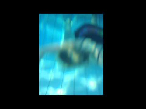 Health Project: Swimming