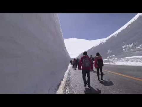 2019 雪の大谷 Walking