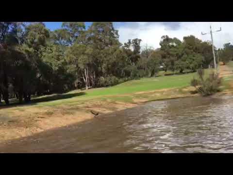 Jet tinny run in the local dam!