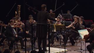 Beethoven Symphony No. 4 / ID Festival Berlin 2015 / Guy Braunstein