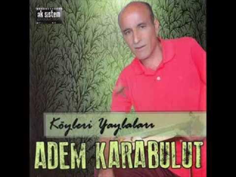 Adem Karabulut - 02 Sandım ki (2013)