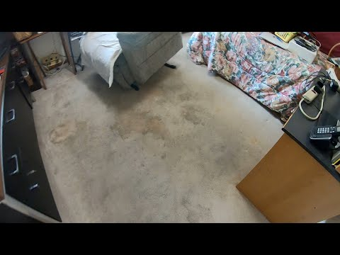 Cleaning Dirty Worn Carpet For A New Customer Before They Have Company