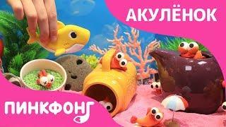Акулёнок 123   Акулёнок   Песни про Животных   Пинкфонг Песни для Детей