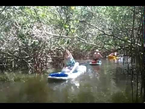 Robinson Preserve Paddle boarding and Kayaking tours and Rentals
