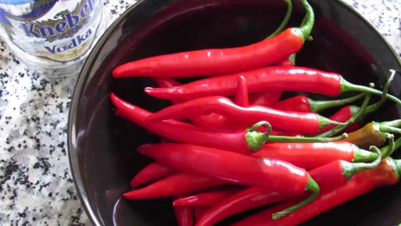 Как самому приготовить настойку перца — 1