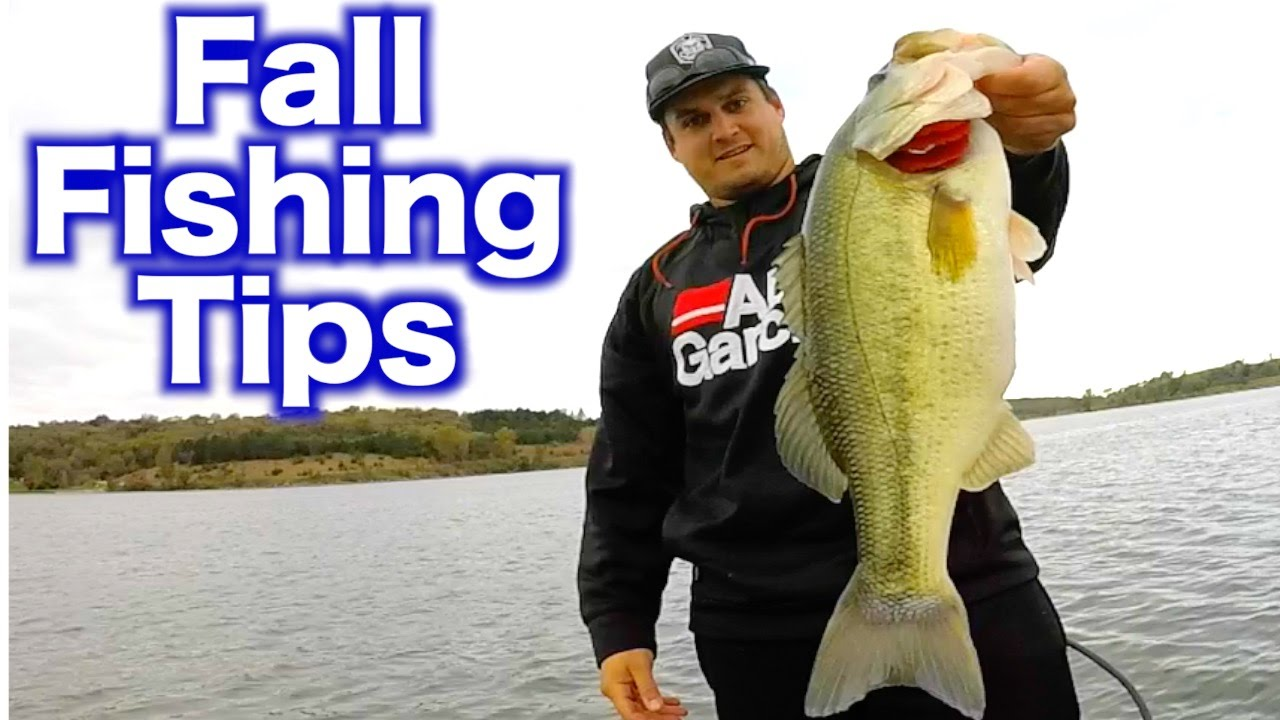 fall bass fishing small lakes and ponds tips and catches