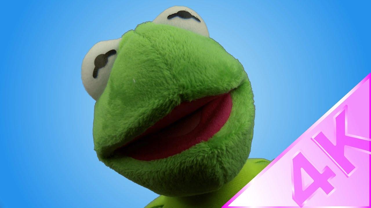 f07a5eed873 Ty Beanie Babies - Kermit Md 4K - YouTube