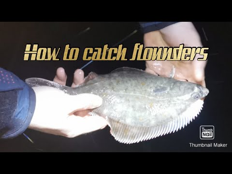 Flounder Fishing - Full Documentary - Start To Finish