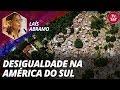 Cepal: Laís Abramo fala sobre desigualdade na América do Sul