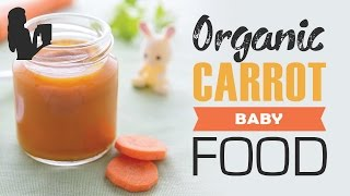 Organic Carrot Baby Food Recipe by Blender Babes