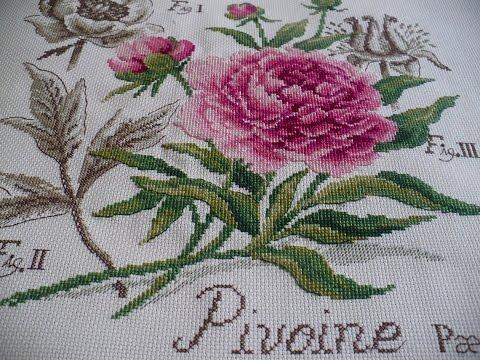 СП Вышиваем подушки. Пион из серии Ботаника. Завершение.