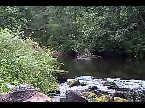 река вьюн рыбалка форель