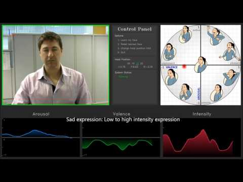 Real-time Facial Expression / Emotion Analysis