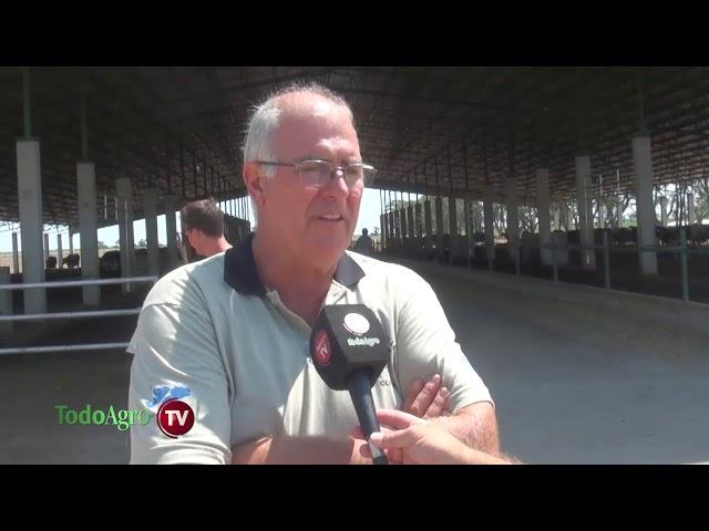 En Cabaña del Valle las vacas viven mejor