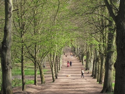 Places to see in ( London - UK ) Hampstead Heath
