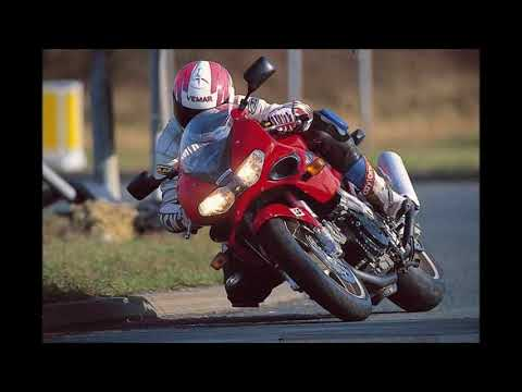 SUZUKI TL1000S 1997 2001 Review