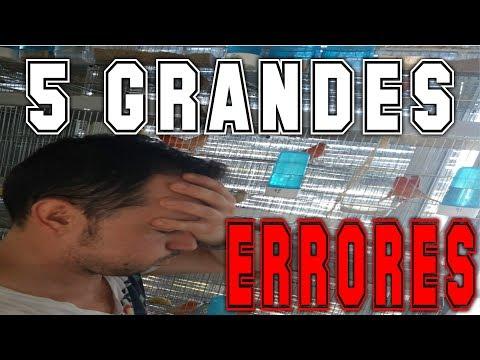 5 GRANDES ERRORES DE MI CRIA 2018