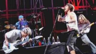 red hot chili peppers - John Frusciante - I feel love