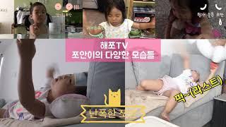 카멜레온같은 쪼안이(해쪼TV) 어린이 채널